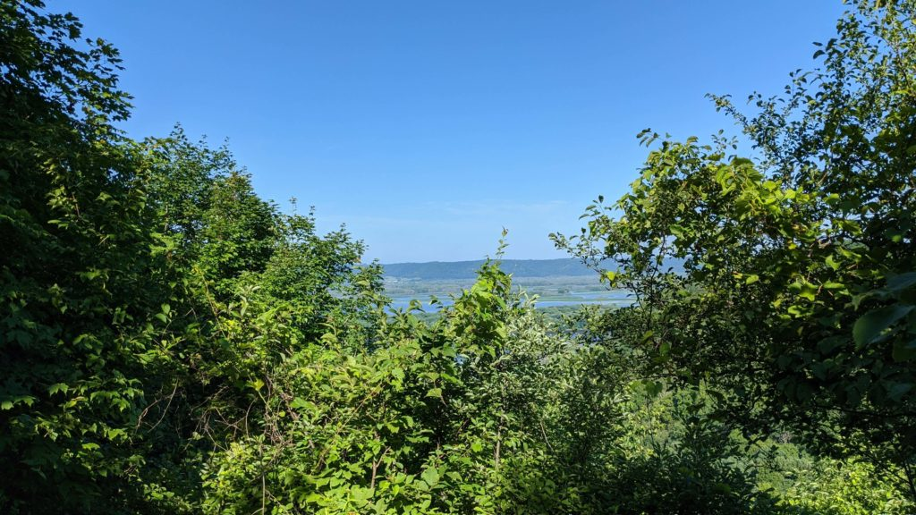 July 2020 DeSoto Bluff View